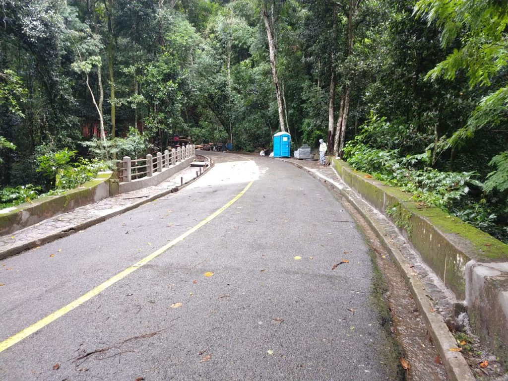 imagem da estrada dona castorina no parque nacional da tijuca