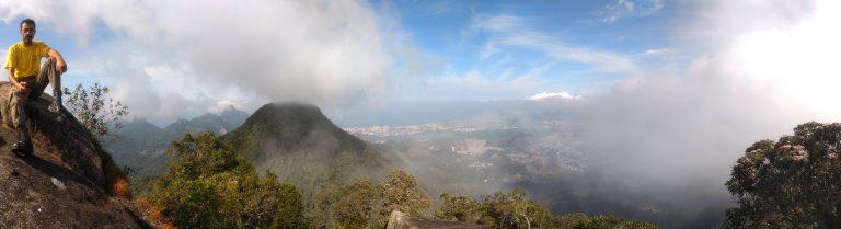 vista de área atingida por incêndio no parque nacional da tijuca