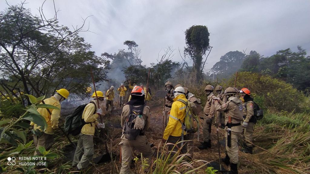 Bombeiros e brigadistas reunidos em treinamento de combate a incêndios florestais